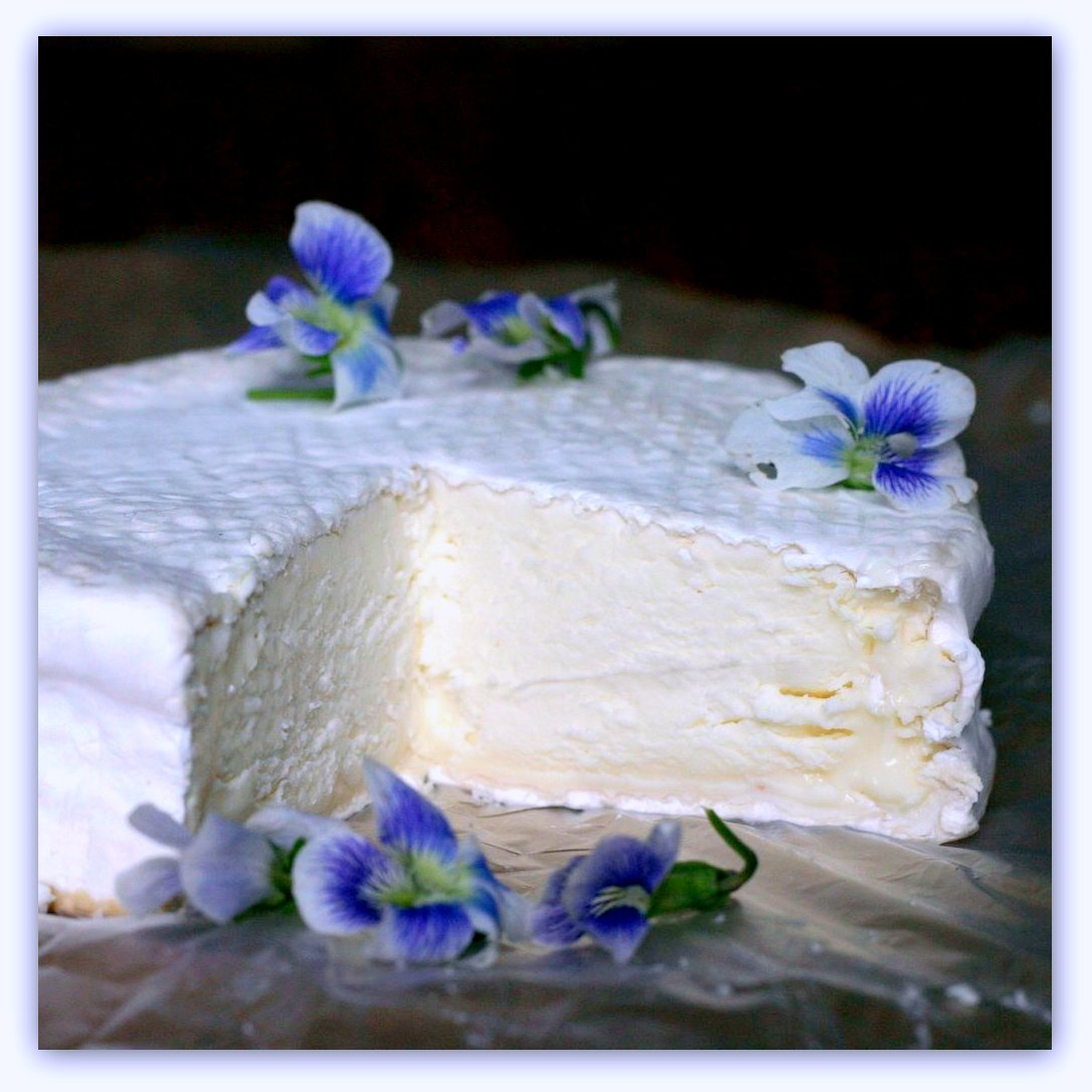 Our camembert with violets.
