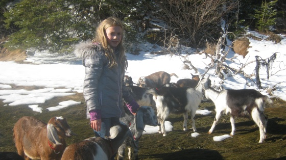 Inez on the Beach with Goats