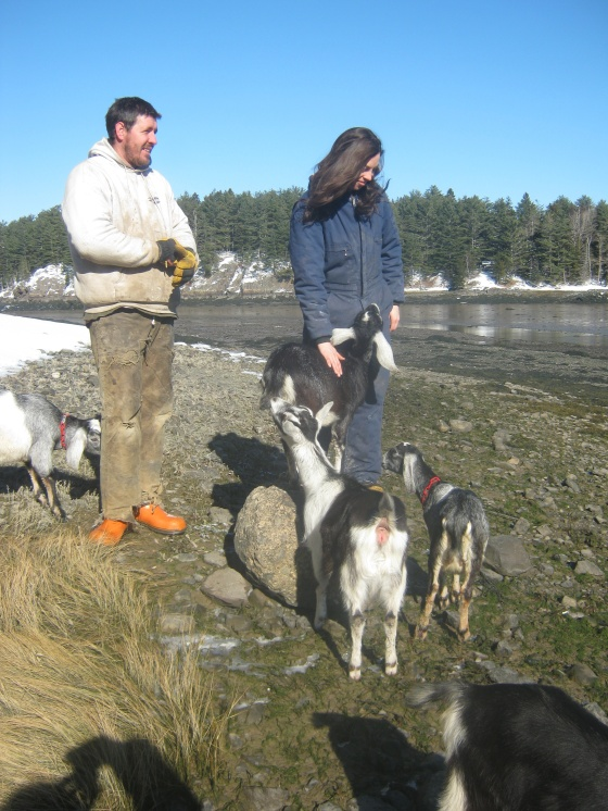 Rachel and Nate on Beach with Goats 2